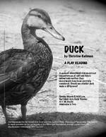 Duck by Christine Kallman